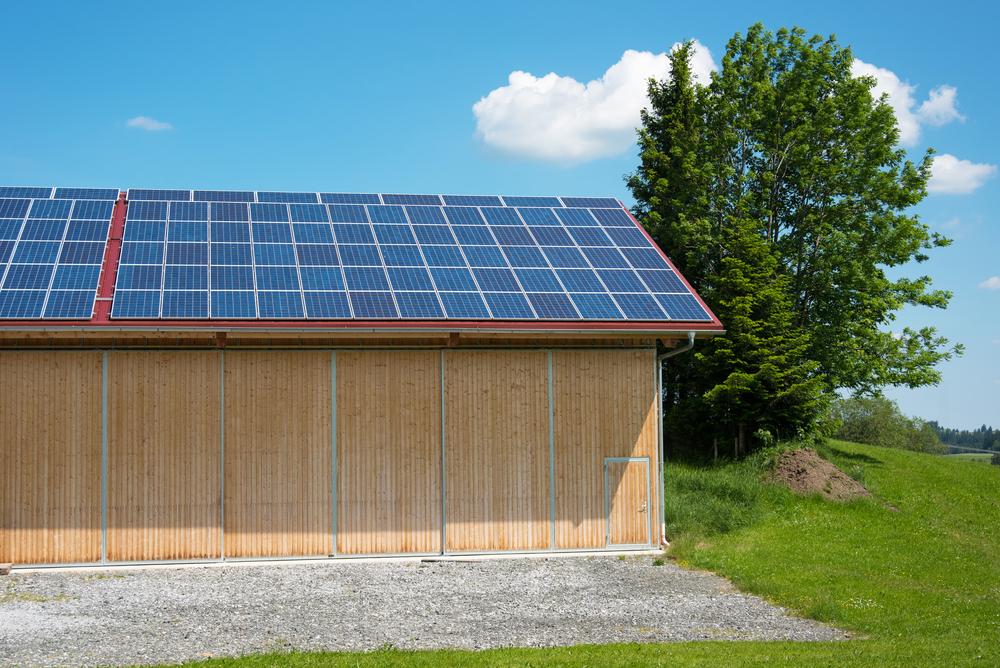 Solceller på Mona og Erlings skur i haven